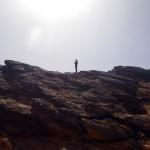 Dans le Sahara Occidental il n'y a pas que du sable et des pierres. On y trouve aussi des montagnes de roches où viennent s'abriter certaines espèces d'animaux.