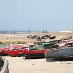 Nous arrivons sur cette plage en milieu de journée, les pêcheurs sont de retour et leurs prises sont déjà sur les étales.