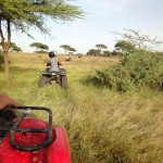 Petite excursion en quad dans la savane africaine.