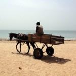 Le cheval (ou l'âne) et la charue sont les moyens les plus communs pour transporter des hommes ou des marchandises en dehors des routes bitumées.