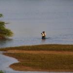 Le fleuve sénégal est source de vie.