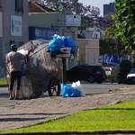 Curitiba. Au Brésil, nous découvrons un nouvelle manière d'entreposer les ordures ménagères : perchées dans une cage à plus d'1,50m de haut elles sont inaccessibles aux chiens. Les plus démunis y récupèrent les canettes et tout objet susceptible d'avoir la moindre valeur marchande.