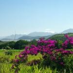 En se dirigeant vers le Sud, les montagnes laissent place à des plaines d'un vert parfois irréaliste.