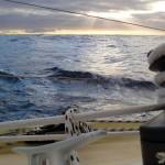 Le 10 janvier à 2h du matin, nous avons quitté le continent Sud-Américain et passons le mythique « Cap Horn » avec une mer très agitée et des vents de force 7. Au petit matin, nous nous délectons à regarder les premiers rayons de soleil qui traversent les nuages.