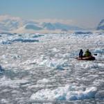 De temps à autres nous quittons le bateau pour faire une petite excursion en annexe. Il est parfois difficile de se faufiler tant la glace est dense… mais à bord de ce petit hors bord nous pouvons approcher les animaux d'encore plus près…