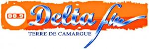 20.07.01 Delta FM