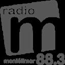 27.04.11 Radio M