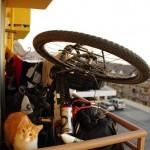 """Antofagasta. Nos vélos sont trop précieux. Comme nous aimons le dire """"Nous n'avons ni maison, ni voiture, seulement nos vélos"""". Ainsi, nous trouvons toujours un moyen de mettre nos montures à l'abri pour la nuit. Parfois nous sommes proche d'un Tetris grandeur nature."""