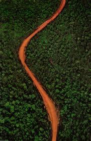 Route transmazonienne