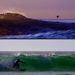 """Siphay au """"bottom turn"""" à Playa Avellanas. Les pélicans imitent les surfer en passant à ras des vagues."""