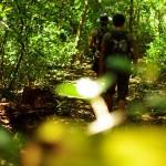 """Nous partons avec Nathan découvrir les alentours du Volcan """"Rincon de la Vieja"""". Une nature extrêmement bien préservée comme dans la majorité du Costa Rica."""