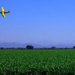 Les champs de maïs sont traités avec des produits qui sont parsemés à l'aide de petits avions comme celui-ci. Nous prenons du produit sur nous au passage, il paraît que ce n'est pas très bon...