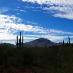 Les paysages du Nord du Mexique nous rappellent parfois les étendues désertique que nous traversions dans le Sud du désert d'Atacama, au Chili.