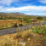 Climat désertique, végétation sèche.