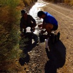 Nous avions clairement sous-estimé l'hostilité de cette région et l'absence de point de ravitaillement. Vers 11h du matin nous n'avons plus d'eau… Après environ deux heures à rêver d'une belle source d'eau nous trouvons ces traces d'eau sur la route. Avec notre filtre Katadyn ce filet d'eau fera l'affaire pour remplir nos gourdes et repartir dans de meilleures conditions.