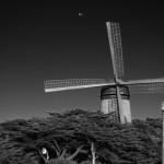 Une fois sur la plage, vous aurez même l'occasion d'apercevoir le Moulin Hollandais de 1902. Il y a vraiment de tout ici !