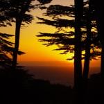 Le couché de soleil sur le pacifique ! En quelques minutes à pieds vous trouverez toujours un parc dans San Francisco vous donnant l'impression d'être en pleine nature. Mais prenez garde, car il y a tout de même certains coyotes qui y rodent !