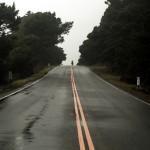 Fin mars 2012, nous quittons San Francisco et roulons vers le Nord. 1300km nous séparent de la ville de Portland en Oregon et la pluie froide va nous accompagner pendant la majorité de cette étape.