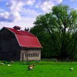 Une ferme typique dans la campagne de l'état de Washington.