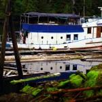Le Mamro Adventures est un bateau de plongée qui offre des tours dans les eaux des fjords du Canada. Dan Ferris, son propriétaire, accepte de nous embarquer à bord pour Prince Rupert pour bien moins cher que le ferry qui fait le même trajet. Pour tous les intéressés pour un séjour de plongée dans cette région exceptionnelle, voir http://www.mamro.com/