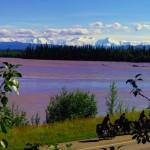 Nous roulons avec au loin le parc de Denali et le mont McKinley qui culmine à 6194m, soit la plus haute montagne d'Amérique du Nord.