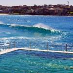 Quelques kilomètres plus au sud du centre ville de Sydney, la plage de Bondi Beach. Nous y allions quelques fois pour profiter du spectacle magnifique que nous offraient les surfeurs, mais aussi pour effectuer quelques longueurs dans la piscine gratuite d'eau de mer sur la plage voisine Bronte Beach. Un cadre magnifique pour enchaîner les longueurs !!!