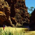 Jewelz nous explique que Simpson's Gap est un point d'eau permanent au coeur du désert, à quelques dizaines de km d'Alice Springs. Les animaux le savent et Siphay surprendra même un petit Wallabie caché dans les hautes herbes. C'est toujours aussi plaisant pour nous d'être loin des afflux touristiques tout en profitant d'une nature et de paysages uniques.