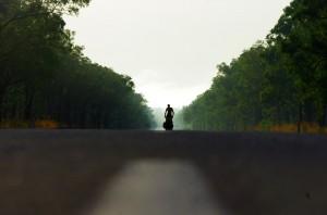 La longue route vers le nord tropical