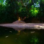 Le Buddha comme on aimerait le voir plus souvent, dans la sérénité de la mère nature.