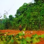 """Aux portes de la forêt de Cardamone, la piste est semblable à celles de la forêt Amazonienne. Pour Morgan, les souvenirs et les sensations réapparaissent. Morgan : """"Parfois, sur les longues routes bitumées et plates, je m'ennuie du vélo. Mais dans cet environnement je ne vois pas passer les kilomètres et je réalise à quel point j'aime être dans ces endroits reculés de la planète."""""""