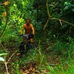 Après plus de 100km dans cette jungle dense et sauvage nous devons rebrousser chemin. Ici la piste et les traces d'éventuels passages ont totalement disparu. Nous savons que nous étions sur le bon cap mais il nous est impossible d'avancer à une allure correcte.. Sans boussole, ni ravitaillement suffisant, et devant maintenant ouvrir notre passage à la machette, il est préférable de rechercher une nouvelle voie plus au Sud... Mais ce jour là nous ne trouverons pas le chemin pour rejoindre la civilisation et passerons une nuit de plus dans les montagnes de Cardamone.