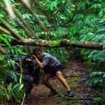 """Troisième jour dans la jungle, nous reprenons la """"route"""". Cette fois nous partons en direction du Sud, pour tenter de rejoindre le village de Chi Pat. Quelques personnes nous ont dit que c'était possible... qu'il y avait un sentier... Pour rajouter de la difficulté à l'exercice, il nous faut également passer sous les arbres couchés qui nous barrent la route. Rien à faire, on passe quand même. Ce n'est pas cela qui va nous arrêter, ni même les sangsues qui viennent s'agripper à nos jambes et nos bras... On en voit ici la trace sur le mollet de Morgan."""