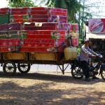 Une autre vision de convoi exceptionnel en terre cambodgienne. Et quelle vision ! A votre avis, où s'arrête la cargaison ? Vraiment impressionnant ce chargement, même si celui là n'est pas le plus ENORME que nous ayons vu !