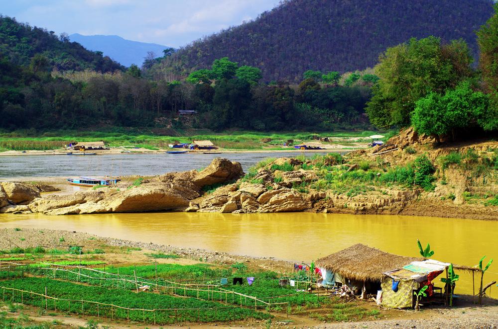 La rivière Nam Khan rejoint le grand fleuve mythique du Mékong (Appelé Nam Khong ici). Nous avons été étonnés depuis que nous roulons le long de ce fleuve de voir plusieurs potagers aménagés sur ces abords durant la période sèche. Une bonne manière de compenser le manque d'eau venant des montagnes qui sert, à la bonne saison, à irriguer les cultures (en particulier les rizières). D'innombrables habitations de fortunes sont aussi installées sur les rives, construites pour seulement quelques mois, jusqu'à ce que le niveau du fleuve remonte.
