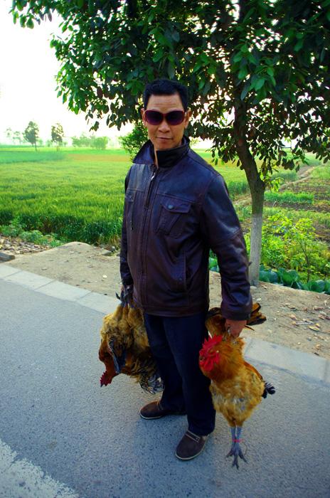 Il est devenu très commun pour nous désormais de voir des paysans marcher le long des routes avec notre futur repas dans leurs mains. Des canards, des lapins ou encore des cochons encastrés dans des cages à l'arrière des mobylettes !