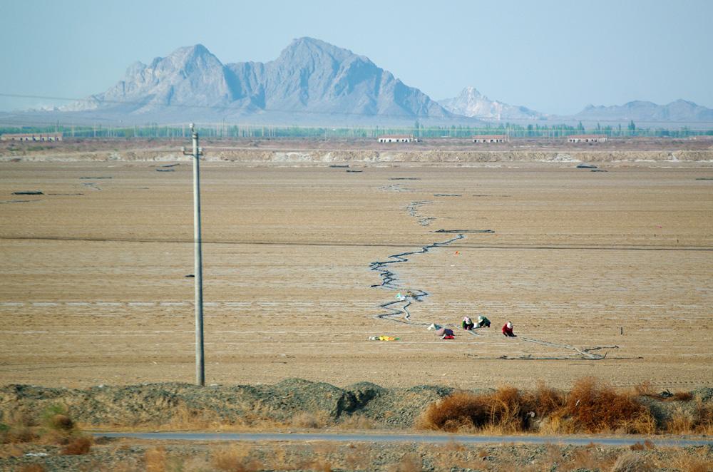 Si les montagnes sont hautes, au nord se trouve un désert aride. Pour faire leurs cultures, les habitants comptent bien sur l'irrigation de la font des neiges qui commence juste à cette époque du printemps. Des techniques ancestrales très sophistiquées à base de conduits souterrains ont été mis en place pour drainer l'eau jusque dans les vallées désertiques pour pouvoir faire des cultures. Sans les montagnes, il n'y aurait personne ici.
