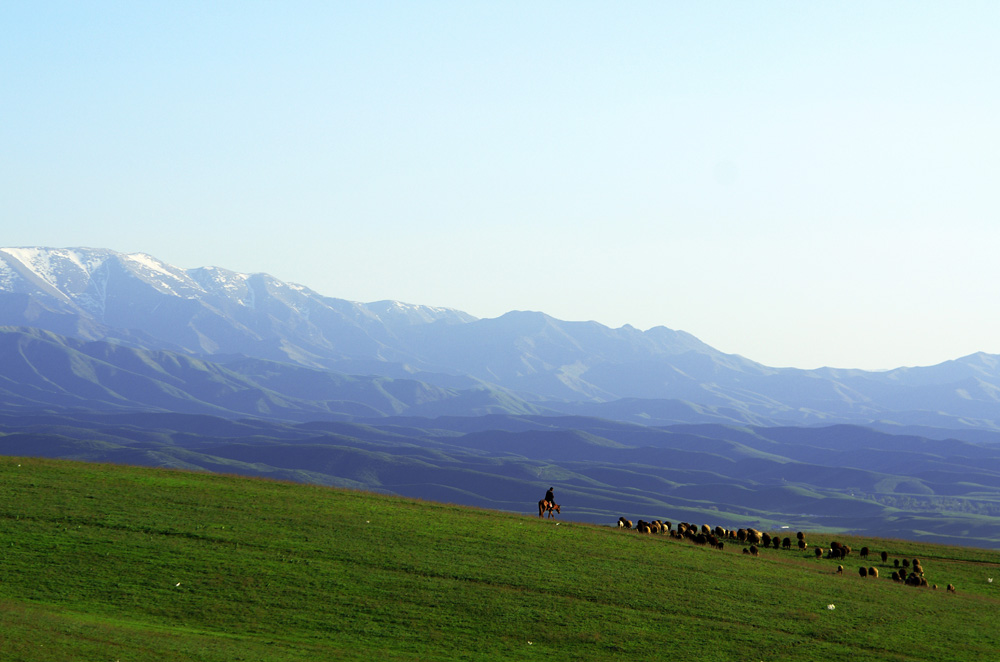 Bienvenue en Asie centrale. Ici, le cheval est roi : il est l'outil du berger et du fermier. Loin là-bas, dans les montagnes, bien avant que l'homme ne tente d'y construise des routes, les nomades se déplaçaient grâce à lui par-dessus les cols enneigés. Nous sommes fascinés.