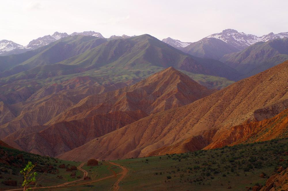 Blanc, vert, orange. Ça pourrait être le drapeau du Kirghizstan pour dénoter la couleur de ses montagnes. Nous vadrouillons entre les teintes de couleur en fonction de notre altitude. Là, après avoir passé pas mal de temps en bas dans un canyon, nous remontons vers la verdure.