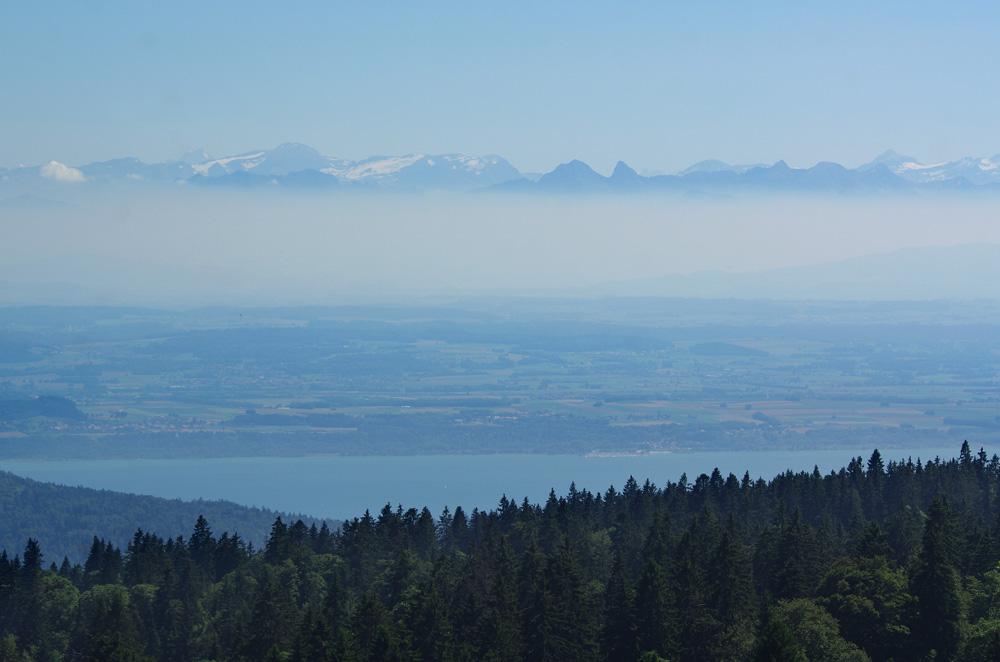 Après une journée record de 260km, nous grimpons les 900 m qui nous séparent de la Chaux-de-Fonds pour aller rejoindre Bertrand qui y habite. Retrouver un compagnon de voyage comme lui est un bonheur évident. A tel point que nous avons prévu de le faire durer 10 jours ! C'est donc dans cet environnement calme et paisible, entre les Alpes et le Jura suisse, que nous nous régalons de baignades dans ...See More